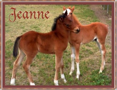 signatures-jeanne foals